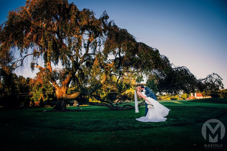 Sunset Tree with Bride and Groom
